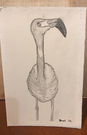 Flamingo Blank Card.