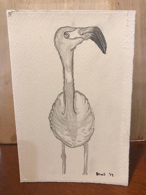 Flamingo Blank Card.
