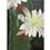 Thumbnail: Cactus Yoga Mat.
