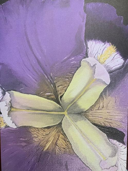 Iris Blank Card