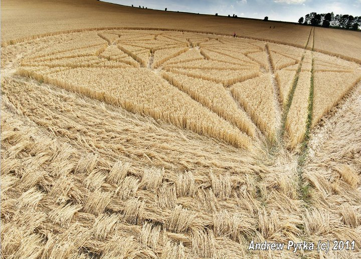 crop circle weaved-2011