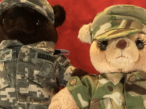 What's the Big Idea about Supporting the Service to the Armed Forces?
