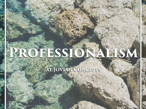 What's the Big Idea about Professionalism?