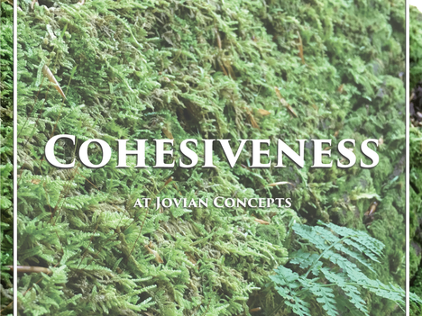 What's the Big Idea about Cohesiveness?