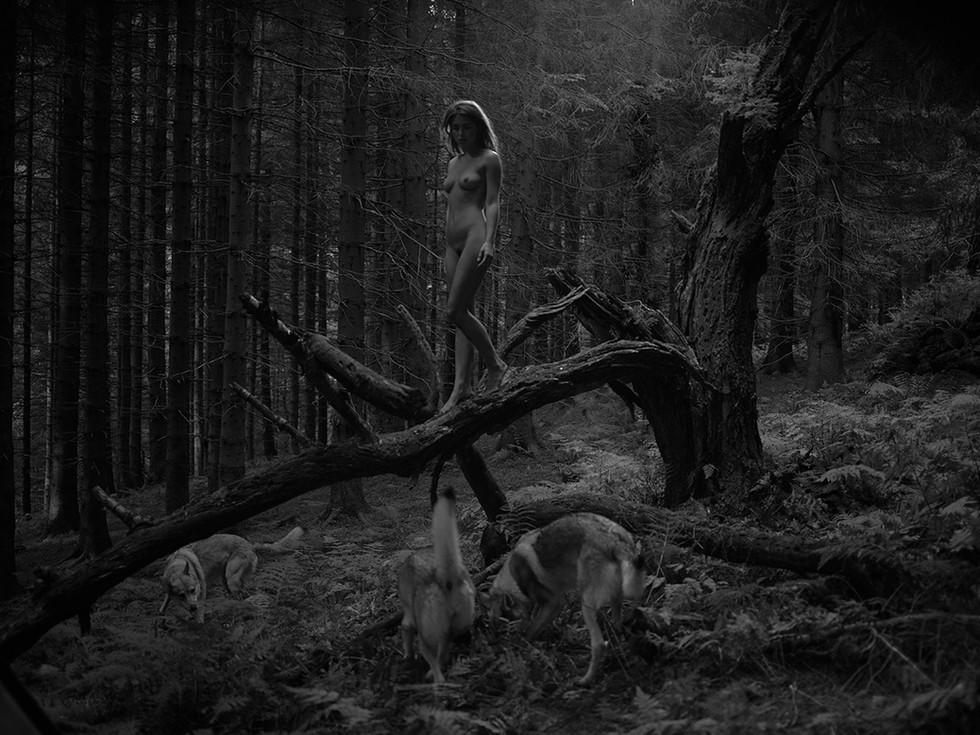 withmywolves.jpg