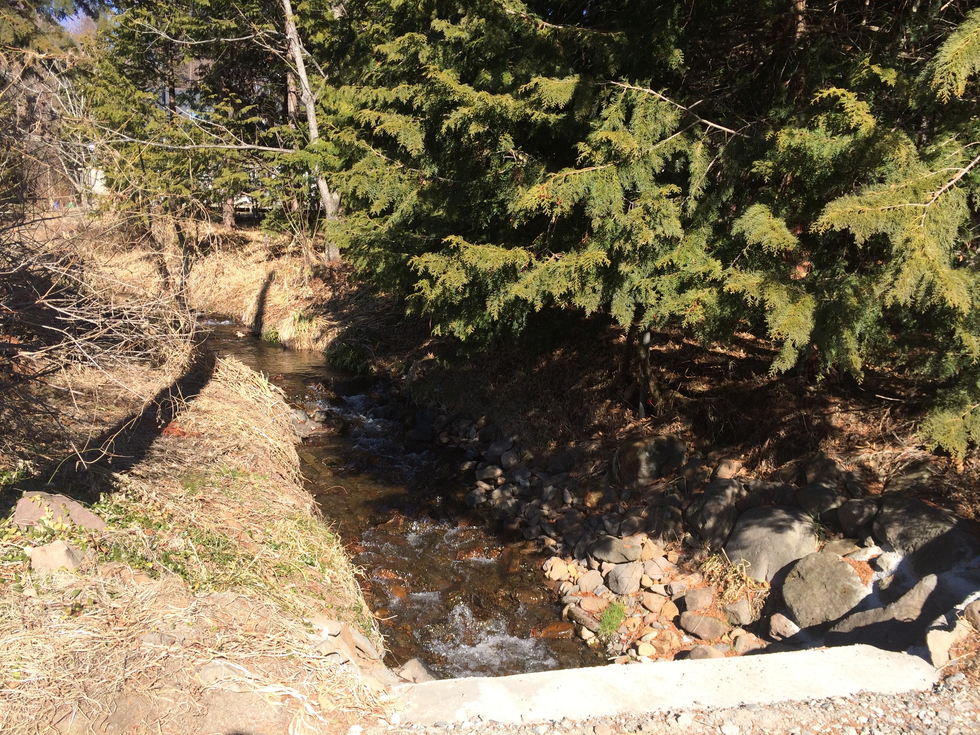 物件西側を流れる小川