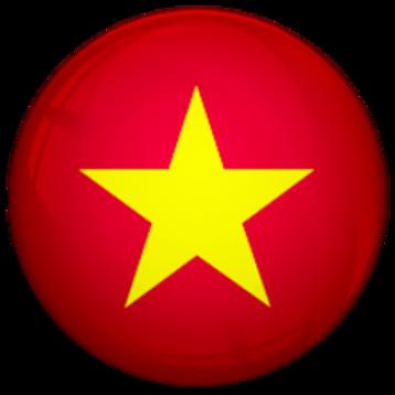 越南-凸_底線拉到底線.png
