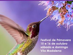 São Paulo: Festival de Primavera