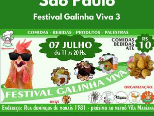 Festival Galinha Viva 3
