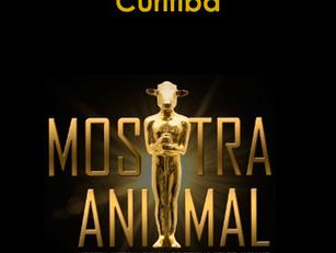 Curitiba: Mostra Animal de Cinema