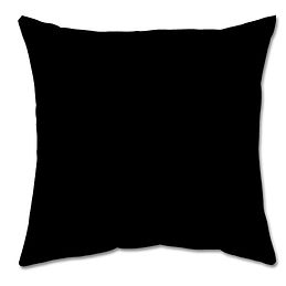 1BACK OF PILLOW.jpg