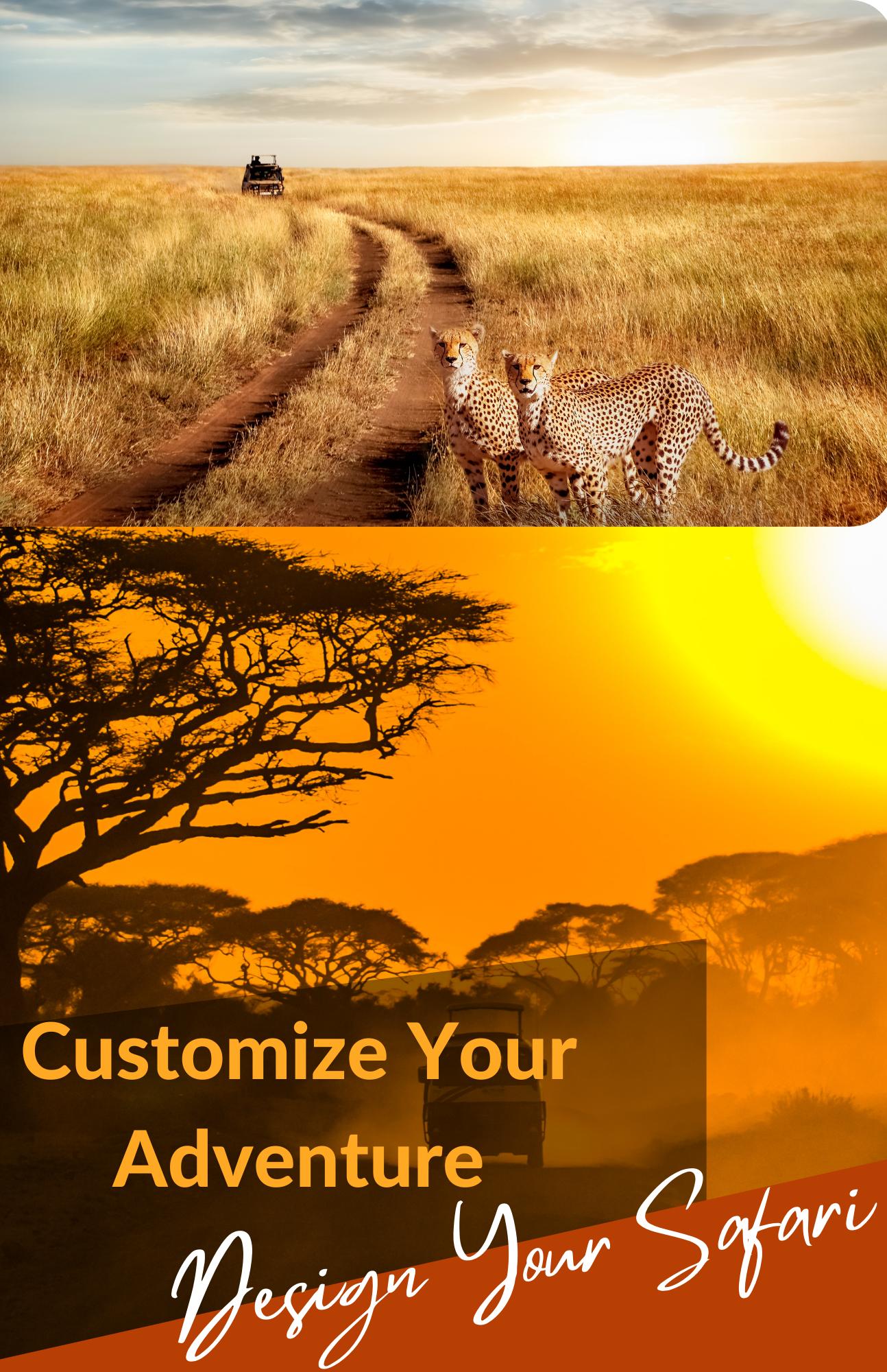 Customize Your Safari