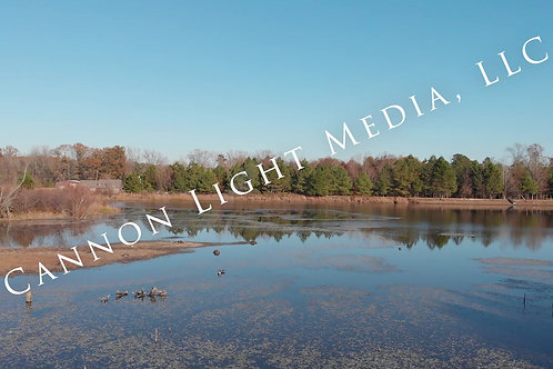 Creek Pond Woods