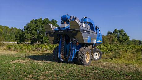 harvest-1682565_1920.jpg