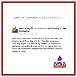 apex review