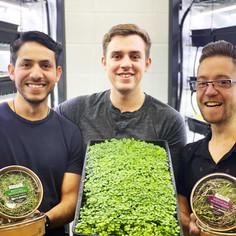 ALLPA Vertical Farming: Mainstreaming Microgreens throughout Alberta