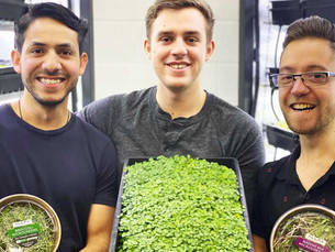 ALLPA Vertical Farming: Mainstreaming Microgreens throughout Alberta