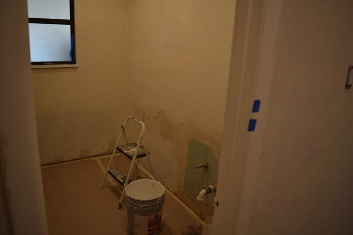 Painting Bathroom Remodel