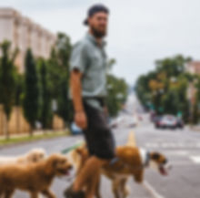 Woof Walk DC owner walking a pack of dogs on beautiful summer day