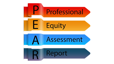 Professional Equity Assessment Report.pn