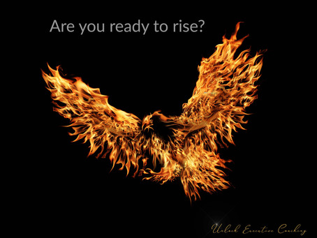 Are you ready to rise?