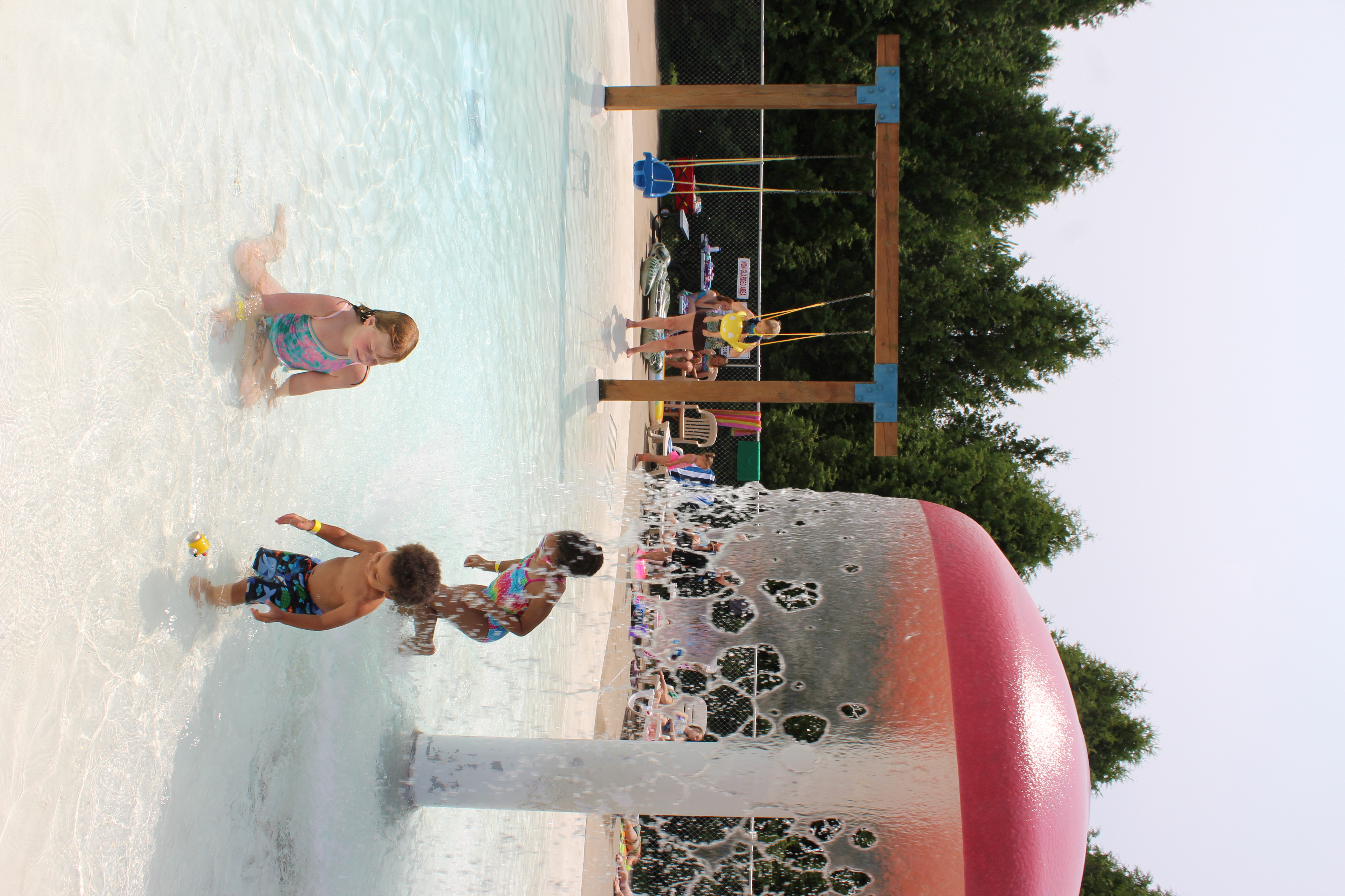 Activity Pool Kiddie area