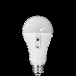 nyx-bulb