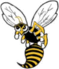 Denison Yellow Jacket mascot art
