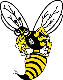 denison yellow jacket clean up.png