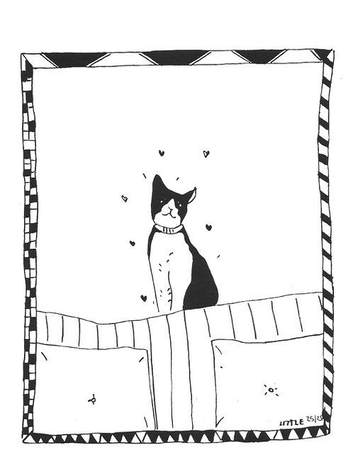 Little. Gato