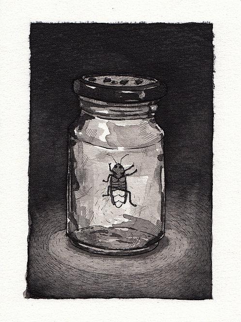 Juan Dormitorio. Insecto