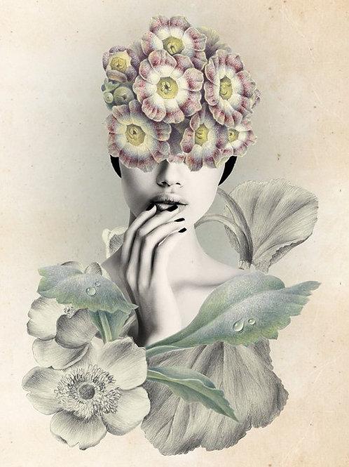 Teresa Cucala.  Gris y color