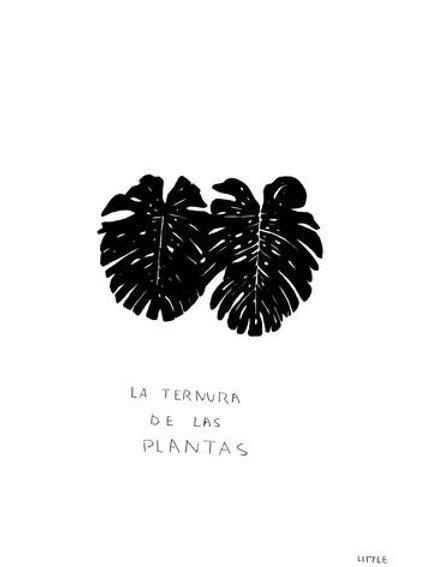 Little. La ternura de las plantas