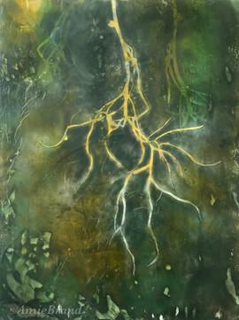 Experimental - roots
