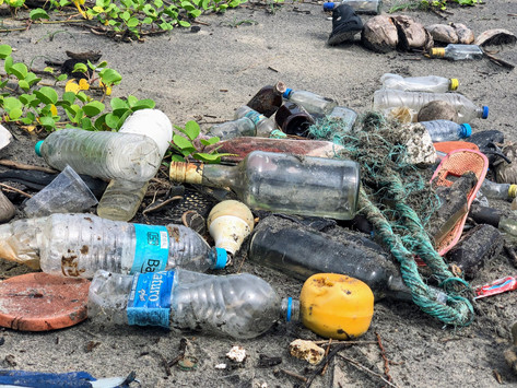 The magnitude of plastic problem
