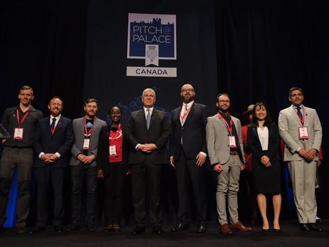 Coastable won third place at Canada Pitch at Palace