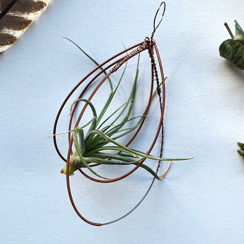 Piano String Teardrop Air Plant Holder