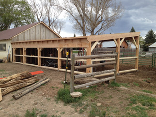 Milled livestock barn during construction