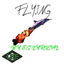 flying.jpg