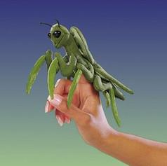 Mini Praying Mantis