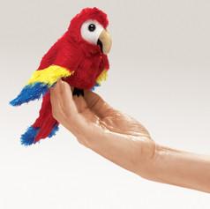 Mini Scarlet Macaw