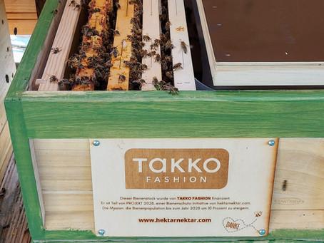 Projekt 2028 -  Die Takko Bienen sind eingezogen