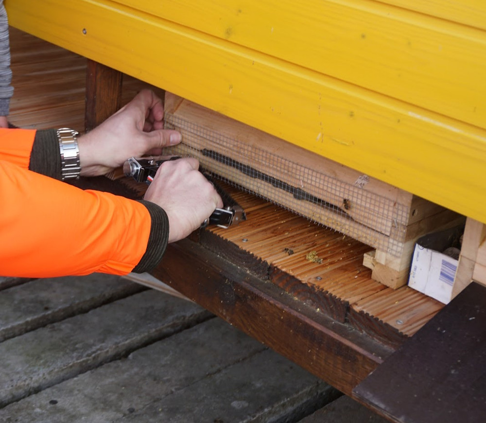 Bienenbeute Mäusegitter anbringen
