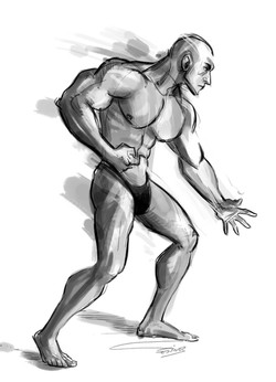 estudio de anatomia a