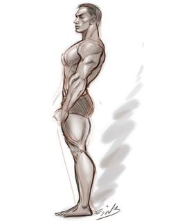 estudio anatomina 2a