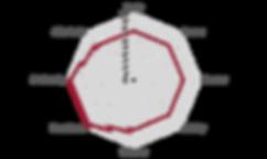 Netzdiagramm_Bugoyi_Washed.png