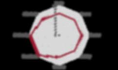 Netzdiagramm_Muhondo_Washed_1.png