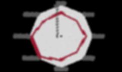 Netzdiagramm_SaoJose.png