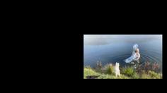 Screen Shot 2020-11-09 at 7.09.32 PM.png