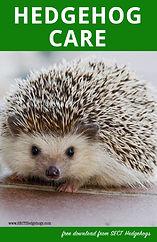 hedgehog care book-1.jpg